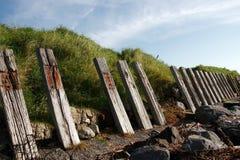 Protección de la erosión Foto de archivo libre de regalías