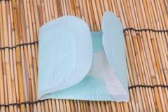 Protección de la higiene de la mujer (sanitaria) Fotos de archivo