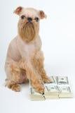 Protección de las finanzas Fotos de archivo libres de regalías