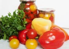 Protección de los tomates Fotografía de archivo libre de regalías