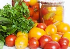 Protección de los tomates Imagen de archivo libre de regalías