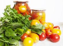 Protección de los tomates Foto de archivo libre de regalías
