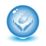 Protección del corazón Fotos de archivo