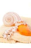 Protección solar de la botella del espray, toalla, cáscaras Fotografía de archivo libre de regalías