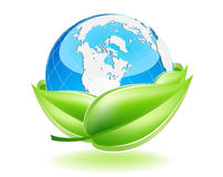 Protect The Earth. This image is a vector file representing a 3d Earth Globe in a leaf nest,  all the elements can be scaled to any size without loss of Royalty Free Stock Images
