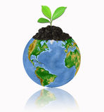 Protect the environment with a tree isolated ove stock photos