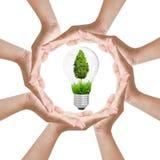 Protect idea nature Stock Image