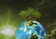 Protect Our Nature. The Earth in space and on the earth grow beautiful, healthy trees Stock Photo