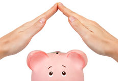 Protect your money. With piggy bank Stock Images