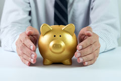Protect your money. Protect your saving concept using hands covering golden piggy bank royalty free stock images