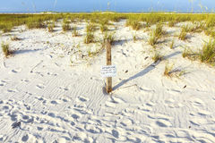 Protected area for shorebird nesting at the beach Stock Image