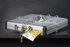 Protected case Royalty Free Stock Photo