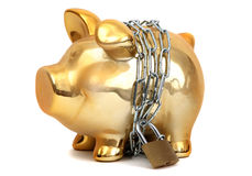 Protected piggy bank. Golden piggy bank protected with chain and padlock on white royalty free stock photos
