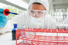 Protected scientist dropping liquid in a test tube Royalty Free Stock Images