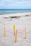 Protected Sea Turtle Nest Stock Photography