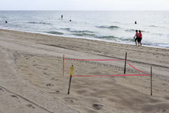 Protected Sea Turtle Nest Stock Photos