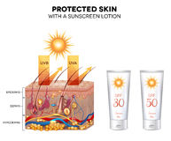 Protected skin with a sunscreen lotion. UVB and UVA rays can not penetrate into the skin. Sunscreen lotion bottle with SPF 50, very high protection Royalty Free Stock Image