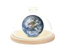 Protecting the Earth planet. Earth planet enclosed under glass bell jar on wooden base over white background - environmental protection concept Royalty Free Stock Photos