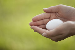 Protecting the Egg Royalty Free Stock Photos