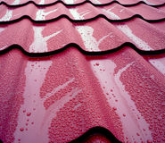 Protecting the house from rain and mud. General view of wet metal roof shingles, protecting house from rain and mud Royalty Free Stock Image
