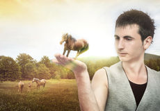 Protecting the nature. Young man holding a horse Royalty Free Stock Images