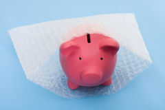 Protecting Your Money Royalty Free Stock Photo