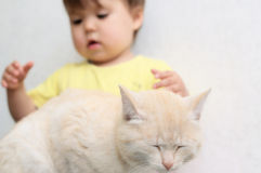 Protection of animals from cruel treatment of kids. Protection of animals from cruel treatment Stock Images