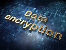 Protection concept: Golden Data Encryption on digital background Royalty Free Stock Photos