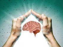 Protection de cerveau et concept de droites intellectuelles photo libre de droits