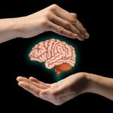 Protection de cerveau et concept de droites intellectuelles photographie stock