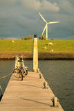 Protection de l'environnement. Image libre de droits