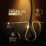 Protection de soins capillaires d'huile d'argan contenue dans la bouteille Image libre de droits