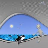 Protection des épaulards et des dauphins Image libre de droits