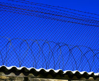 Protection from a fence and a barbed wire Royalty Free Stock Photos