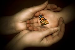 Protection and love. Mother holding her child hand, with a butterfly lying on it like a concept for mother´s protection, tender love, spirituality Stock Photos
