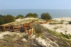 Protective barriers in the dunes of the Curonian Spit National Park. Royalty Free Stock Image