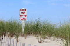 Protective Fence Along Sand Dunes on Cape Cod Beach Royalty Free Stock Photography