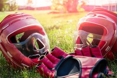 Sports equipment for hand-to-hand combat lies on the grass royalty free stock photo