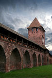 Protective Wall. Protektive wall in Worms (Germany) - 3/4  age Royalty Free Stock Photo