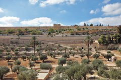 The protective wall of Jerusalem Royalty Free Stock Photography