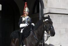 Protector de caballo Fotos de archivo