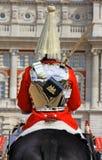 Protector de caballo real Fotografía de archivo libre de regalías