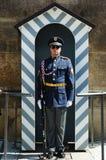Protector de palacio checo Fotografía de archivo