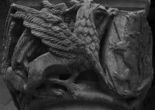 Protector del escudo Imagenes de archivo