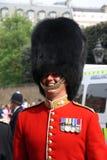 Protector en la boda real 2011 Fotos de archivo