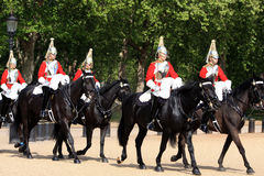 Protectores de caballo Fotos de archivo