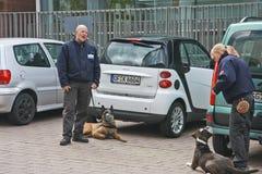 Protectores del servicio de seguridad con los perros Imágenes de archivo libres de regalías