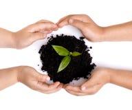 Protegendo nosso ambiente Foto de Stock Royalty Free