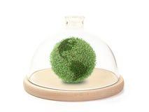 Protegendo o globo verde fotografia de stock