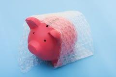 Protegendo seu dinheiro Imagens de Stock Royalty Free